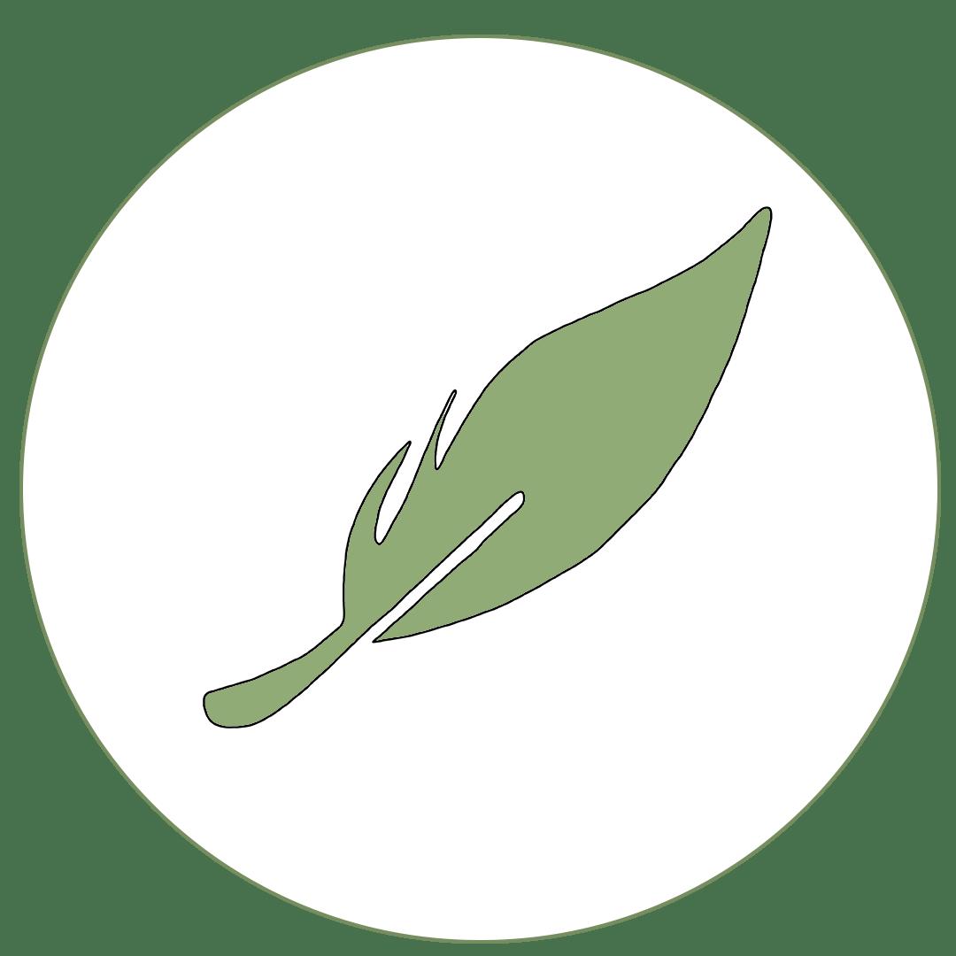 Icon von Feder