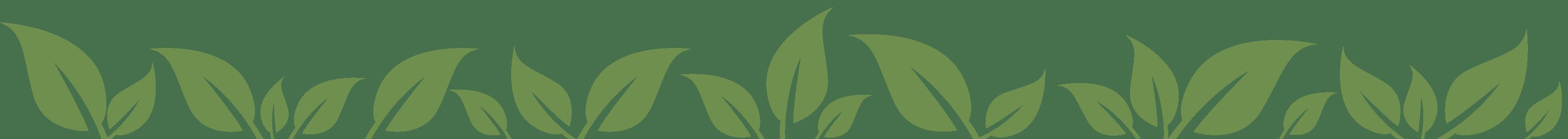 PFABO Blättermuster